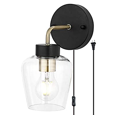 TeHenoo Plug in Wall Lamp with Clear Glass,Retro Industrial Wall Sconce Light with on/Off Switch for Living Room,Bedroom,Bar,E26 Base