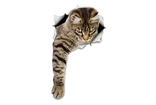 Winston & Bear 3D Cat Stickers - 2 Pack - Reaching Tabby Stickers For Wall, Fridge, Toilet And More Tabby Cat Stickers