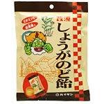 【20個セット】改源 しょうがのど飴 (80g)×20個セット 生姜