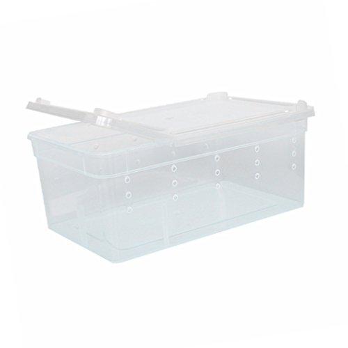 Wasserreptil Zuchtbox Transportbox Fütterung Brutbox für Terrarium Aquarium Reptil Tank - Weiß, 19x12.5x7.5cm
