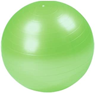 バランスボール 55cm (ポンプ付) 【ヨガボール フィットネスボール ジムボール】