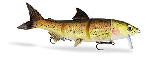 FISHINGGHOST® | RenkyOne® - 25cm, 180g – XL Hybrid Swimbait Renke zum Angeln auf Hecht, Hechtköder zum Schleppangeln, Gummifisch Köder für Raubfische (1 STK.) (Trout Costume)