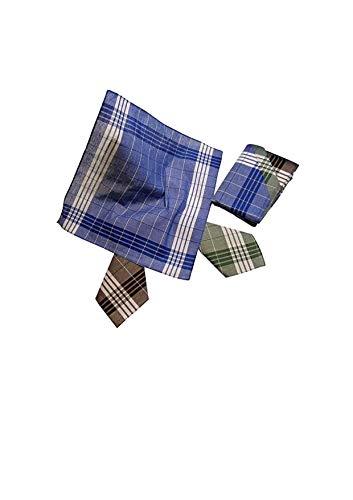 Karl Teichmann 12 Herren Stoff-Taschentücher I Unterschiedliche wählbare Designs I Baumwolle I 40 cm x 40 cm (Farbvariante 11)