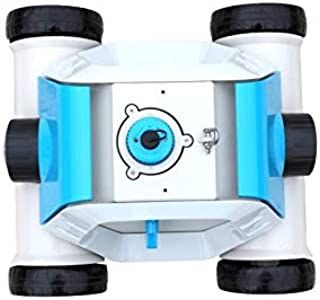 Amazon.es: robot piscina