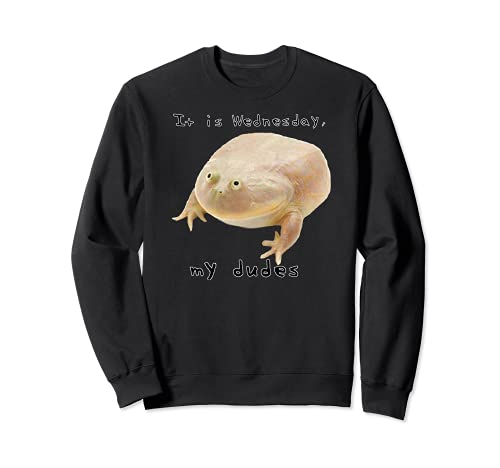 It is Wednesday My Dudes | Classic Funny Frog Meme Sudadera