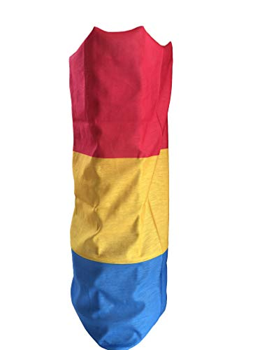Pansexual LGBT Gay Pride vlag Quick Dry microvezel hoofddoek outdoor Magic Bandana Hals Snood Head Wrap hoofdband sjaal gezichtsmasker Ultra Soft Elastische hoofddoek
