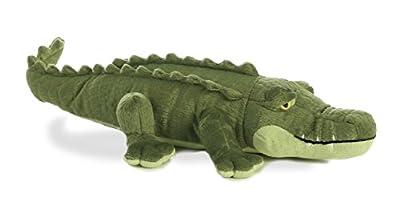 """Aurora - Miyoni - 16"""" Alligator"""