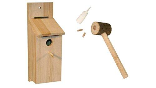 Cajou Meisen - Nistkasten - Set zum selbst Bauen zum Schutze der heimischen Vogelarten (2 Stück)