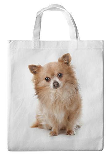 Merchandise for Fans Einkaufstasche- 38x42cm, 8 Liter - Motiv: Chihuahua Langhaar sitzend [ 01 ]