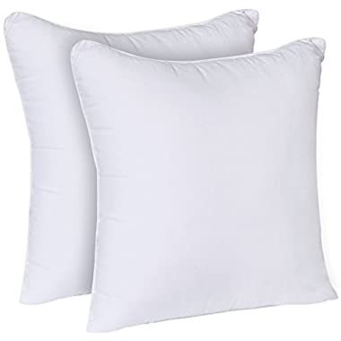Utopia Bedding Decorative Pillow Inserts (Pack of 2, White) - Square 18 x 18 Inches Sofa Bed Pillow - Indoor White Pillows (Microfiber)