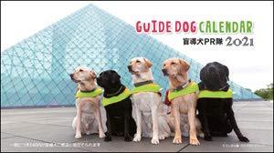 2020年 盲導犬寄付金付「盲導犬PR隊」卓上カレンダー
