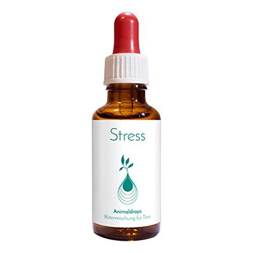 STRESS UND VERBAND, 100 % natürlich, für Katzen / Hunde / Pferde / Kleintiere, 30 ml Pipettenflasche, alkoholfrei