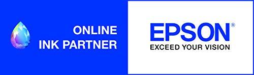 Epson T6641 - Cartucho de tinta para impresoras para Epson L100/L110/L200/L300/L355/L550, color negro