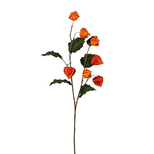 wohnfuehlidee Kunstpflanze Physalis, 2er Set, Farbe orange, Höhe ca. 102 cm