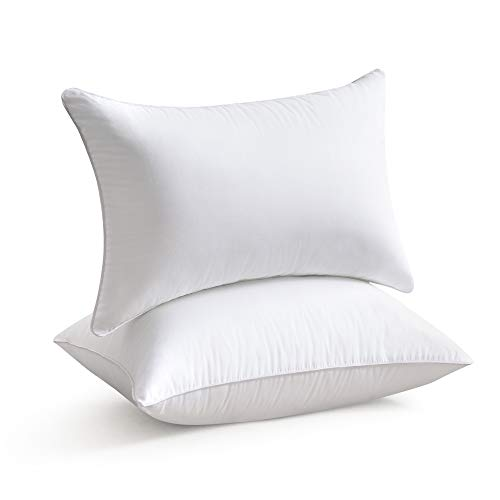 Throw Pillow Inserts