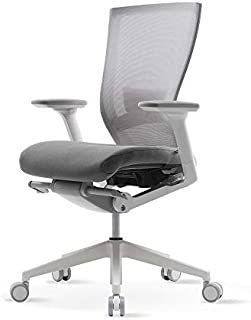 SIDIZ T50 Ergonomic White Desk Chair for Home & Office (TNB500LDA) : Breathable Mesh Back and Fabric Seat, Lumbar Support, 3-way Adjustable Armrest, Adjustable Seat Slide/Slope, BIFMA Certified (Gray)