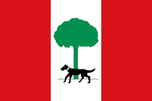magFlags Bandera Large Gaibiel | Municipal de Gaibiel l Alt Palància | Bandera Paisaje | 1.35m² | 90x150cm