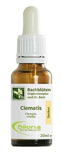 Joy Bachblüten, Essenz Nr. 9: Clematis; 20ml Stockbottle