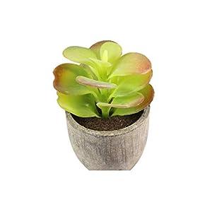 Artificial Succulent Plants Fake Artificial Bonsai with Pots Decorative Ball Plants Artificial Flower Mini Plants