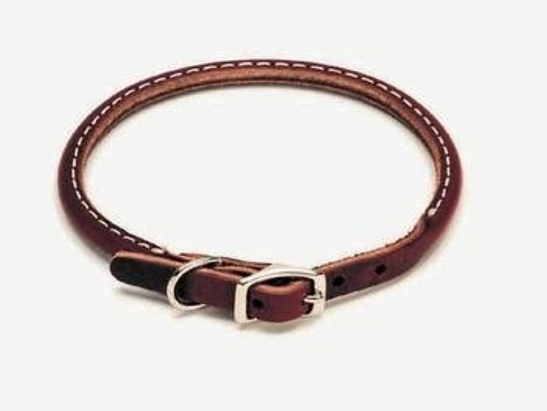 Coastal Pet Circle T Latigo Rolled Leather Dog Collar (10 Inch L x 3 8 Inch W) by Coastal Pet