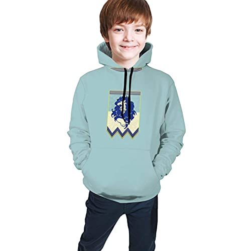 Sudaderas Suéter con Capucha para Adolescentes Fire Emblem 3 Houses Blue Banner Classic Comfortable Sweatshirts Teen Hooded Sweate Tops with Pockets Comfortable For Boys Girls