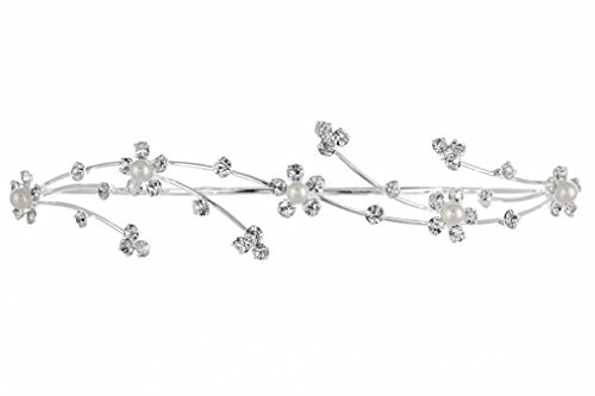 誇張広がりそっとElegant Flower Girl Bridesmaid Tiara Hair Comb - Silver Plated Faux Pearls T160 [並行輸入品]