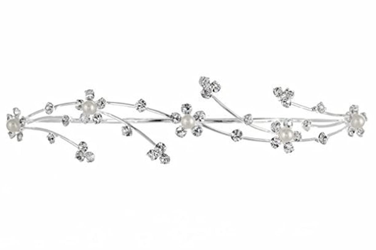 繊維非効率的な戦術Elegant Flower Girl Bridesmaid Tiara Hair Comb - Silver Plated Faux Pearls T160 [並行輸入品]