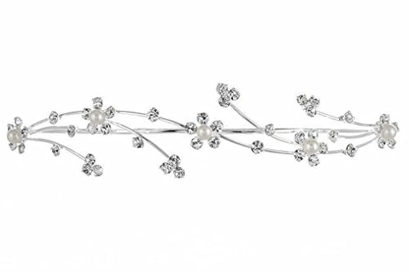価値終了するボーカルElegant Flower Girl Bridesmaid Tiara Hair Comb - Silver Plated Faux Pearls T160 [並行輸入品]
