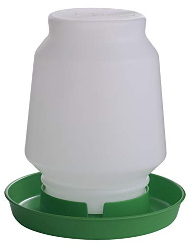 Little Giant 1 Gallon Complete Plastic Poultry Fount (1 Gallon) Heavy Duty Plastic Gravity Fed Water Container Jar (Lime Green) (Item No. 7506LIMEGREEN)