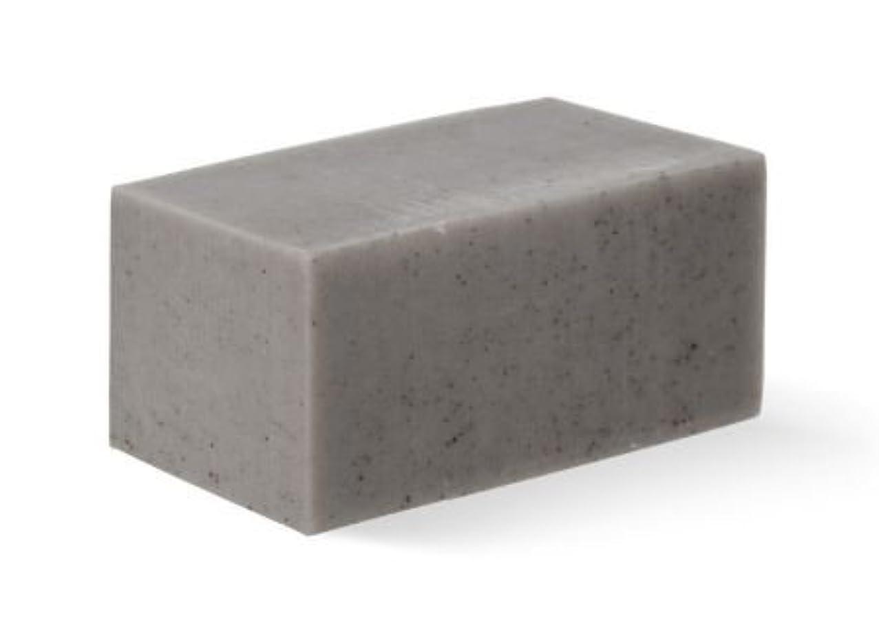 うがいブロンズナット[Abib] Facial Soap grey Brick 100g/[アビブ]フェイシャルソープグレー ブリック100g [並行輸入品]