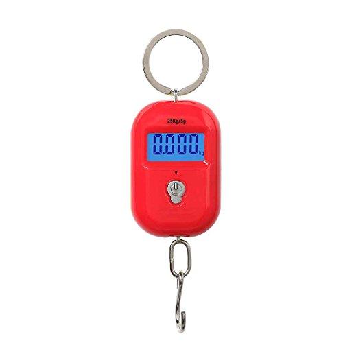 NAYUKY Escala digital para colgar mini gancho electrónico para equipaje, escala LCD retroiluminada, 25 kg x 5 g