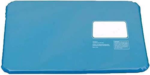 """Kühlendes Gel-Kissen, EIS-Pad, Kühlkissen, Bequeme Körper-Kühlmatte für den Sommer, Schlafhilfe, drinnen und draußen, 21\""""x12\"""" (Blau, Einheitsgröße)"""
