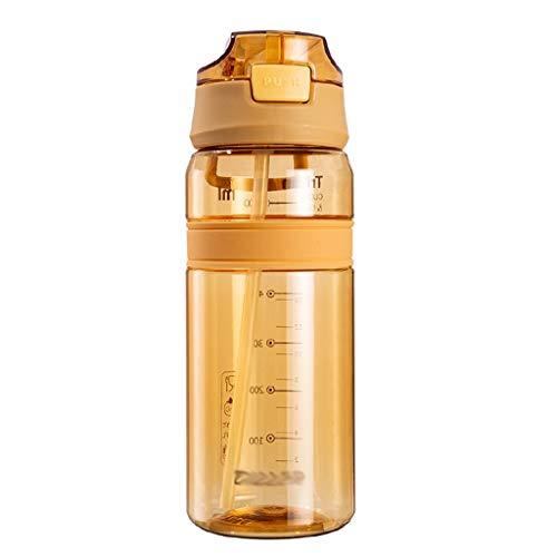 ZYS Práctica Botella de Agua Botellas de Agua 700ml con la manija y StrawDrinks de Botella sin BPA Sport, for Running Gimnasio al Aire Libre y el día a día de Uso Regalo Ideal