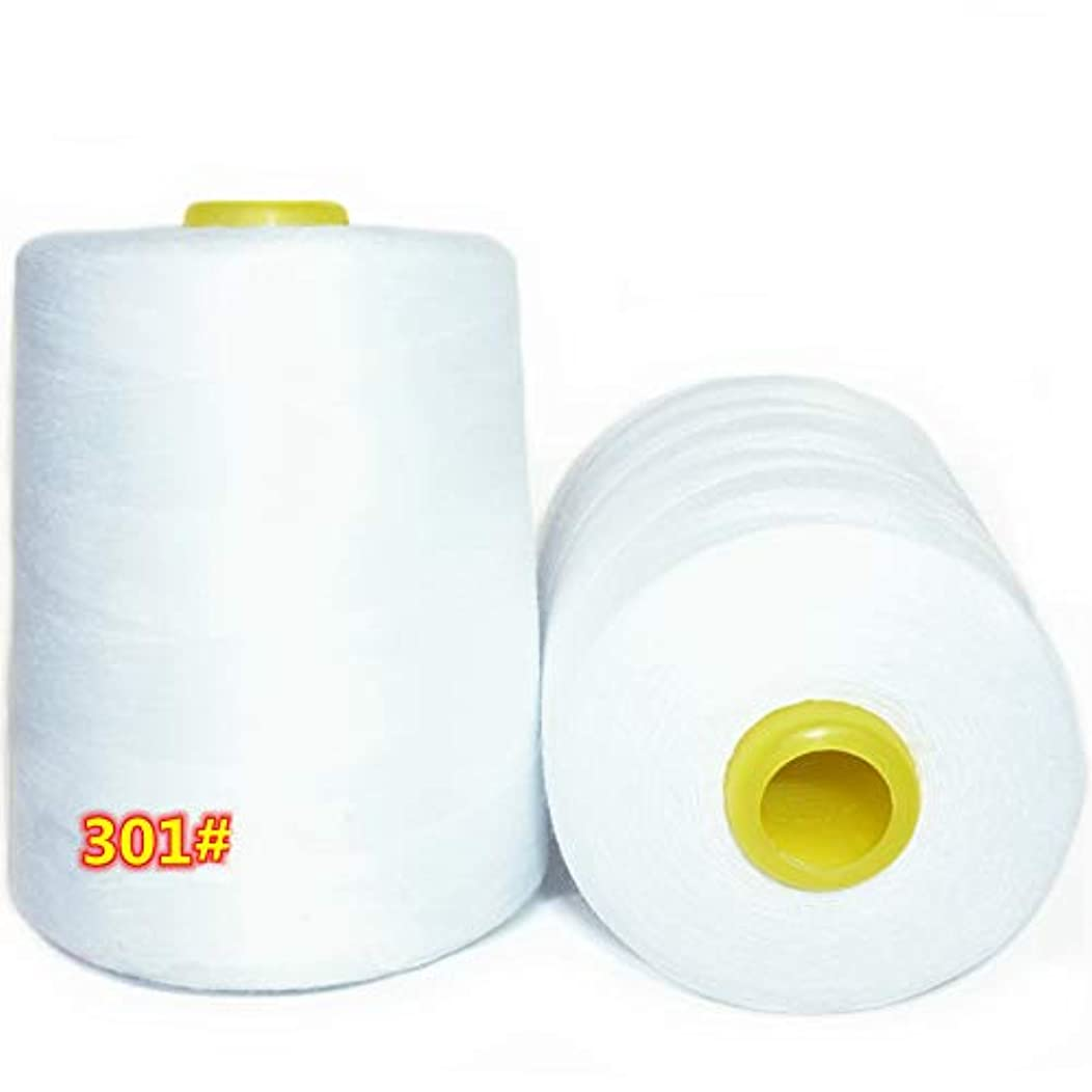 LNKA 2-Pack Serger Cone Sewing Thread (8800 Yards Each) of Polyester Thread for Sewing, Quilting, Serger Bleach