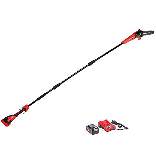Powerworks XB 40V 8-Inch Cordless Polesaw, 2.0Ah Battery and Charger Included PSP301