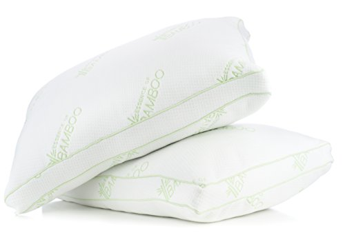 Gusseted Essence of Bamboo Pillows for Sleeping - Derived Rayon with Premium Hypoallergenic Down Alternative Fiber Pillow - Designed and Filled in USA (Queen 2-Pack) Best Sleep Ever