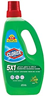 Clorox 5X1 Disinfecting Household Cleaner, Mint - 700 ml