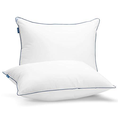 Bedsure Queen Pillows 2 Pack - Hotel Pillows for Sleeping Queen Size Set of 2 High Density 260TC (20 x 30 inches Pillow Insert)