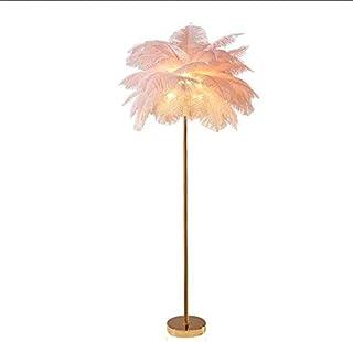 HMKJ Lampadaire Plume D'autruche Rose Nordic Ins Fille Chambre Plume Lampe