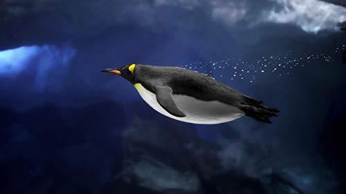 Puzzle 500 Puzzles Puzzle De Madera De Difícil Y Desafiante Juguete Grande Educativo El Alivio Del Estrés Juguete Relajante Juego Divertido Para Adultos Niños Pingüino Nadando Bajo