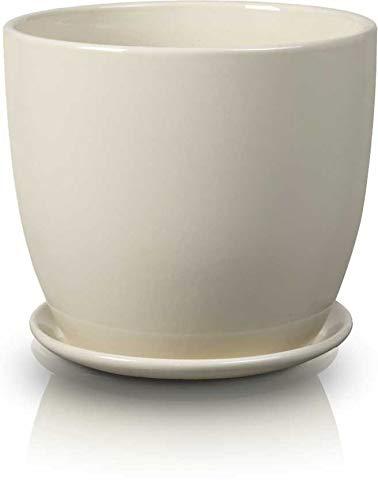 Ceramic Indoor Plant Flower Pot with Saucer-15 cm-Cream