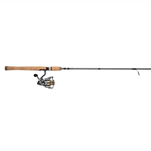 Top 10 Best Pflueger Pressp President Spinning Combo Fishing Reels Rod Comparison