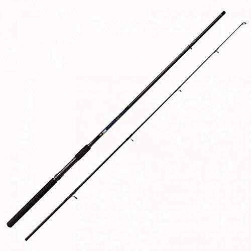 Lineaeffe Vigor Spinn 2.40 m 60 g Canna da Pesca a Spinning Ideale per Tutti i Pesci Predatori Sia in Mare Che Fiume e Lago