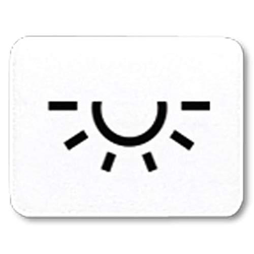 Jung 33LWW Taster-Symbol Licht