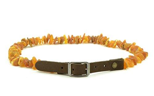 Baltischer Bernstein Pet Halsband mit verstellbarem Trageriemen, 20–65cm, natur Floh und Schutz, unpoliert Baltischer Bernstein Perlen