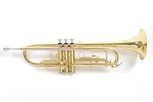 Roy Benson Rb701050 Tromba in Sib Tr-101, Finitura Laccata, Astuccio Rettangolare