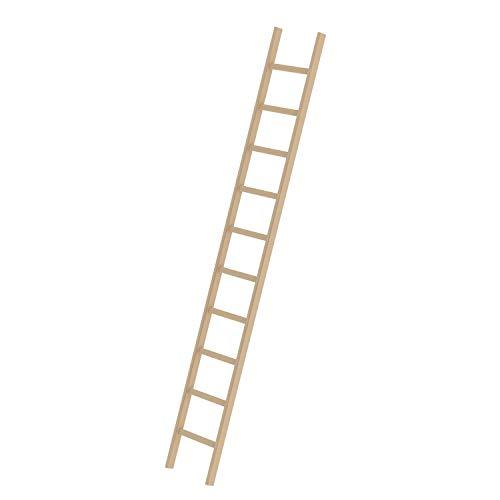 Holz-Anlegeleiter 10 Sprossen Arbeitshöhe bis ca. 4,10 m