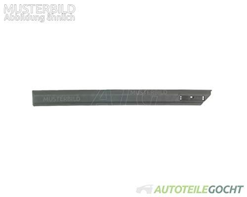 Set schwarz Zierleiste Tür hinten für FIAT DOBLO (263_) 263 10- von Autoteile Gocht