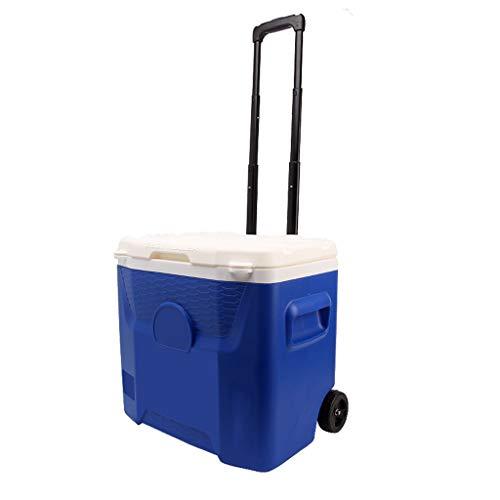 LIYANLCX Roller Kühlbox Auto Kühlschrank 26L Mini Kühlschränke Kühler und Wärmer mit versenkbaren Griff für Reisen, Picknick, Camping