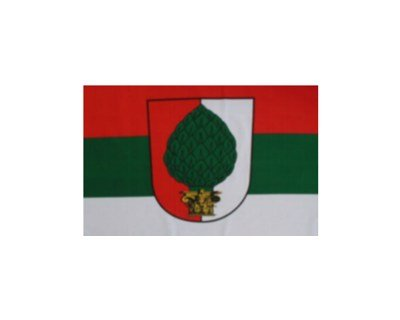 Flagge Fahne Augsburg 90x150cm